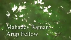 Fellows: Mahadev Raman