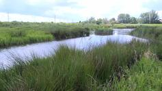 Beam Parklands