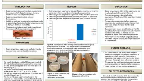 Thumbnail for entry Bernal_poster