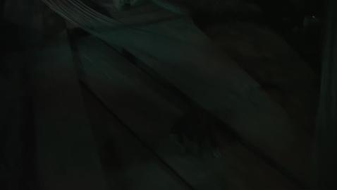 Thumbnail for entry Dracula