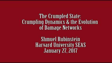 Shmuel Rubinstein 1 27 2017