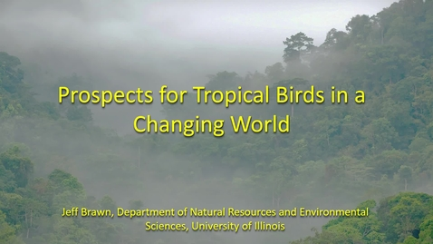 Thumbnail for entry NRES 500 Fall 2018 - Jeffrey Brawn - Prospects for Tropical Birds in a Changing World