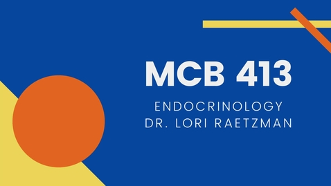 Thumbnail for entry MCB 413: Endocrinology