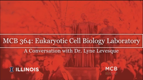 Thumbnail for entry MCB 364: Eukaryotic Cell Biology Laboratory, Conversation with Dr. Lyne Levesque