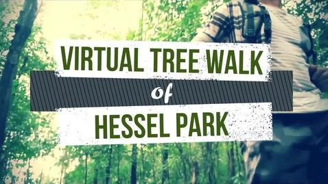 Thumbnail for entry Virtual Tree Walk of Hessel Park 1
