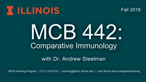 Thumbnail for entry MCB 442: Comparative Immunobiology, Conversation with Dr. Andrew Steelman