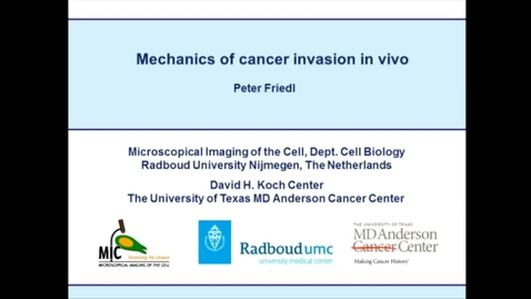 Thumbnail for entry Mechanics of cancer cell invasion in vivo