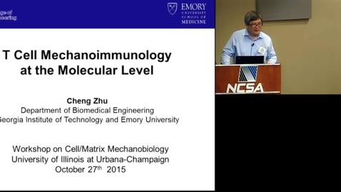 Thumbnail for entry T cell mechanoimmunology at the molecular level