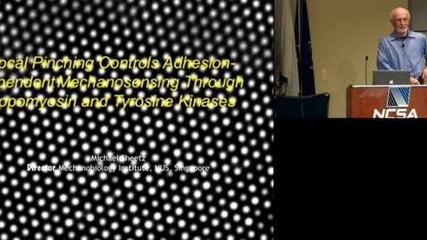 Thumbnail for entry Molecular-Level Rigidity Sensing in Metastasis