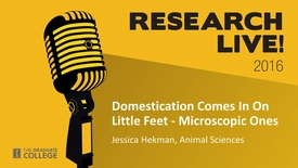 Thumbnail for entry Research Live 2016 - Jessica Hekman