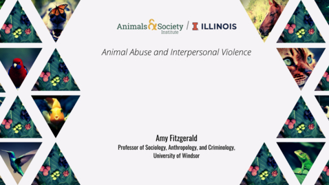 Thumbnail for entry Amy Fitzgerald, Animal Abuse and Interpersonal Violence, 2021 ASI UI Summer Institute