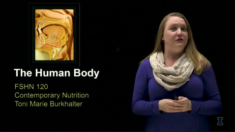 Thumbnail for entry FSHN 120 - THE HUMAN BODY - VIDEO FOR THE VIDEO QUIZ