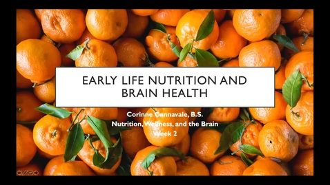 Thumbnail for entry Early Life Nutrition and Brain Health - Session 2 of Nutrition, Wellness, and the Brain Series