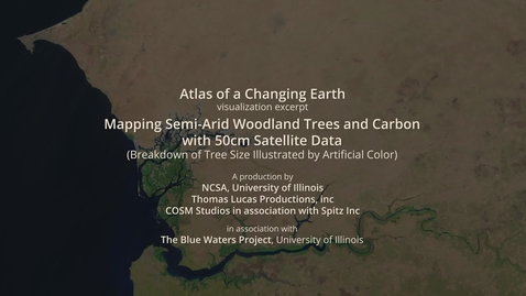 Thumbnail for entry Mapping Semi-Arid Woodland Trees and Carbon with 50cm Satellite Data - Tree Size Breakdown
