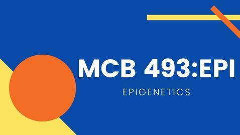 Thumbnail for entry MCB 493 EPI - Epigenetics