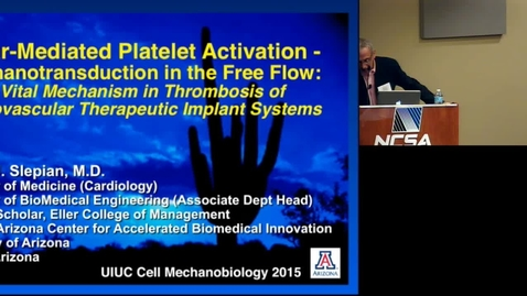 Thumbnail for entry Shear-Mediated Platelet Activation