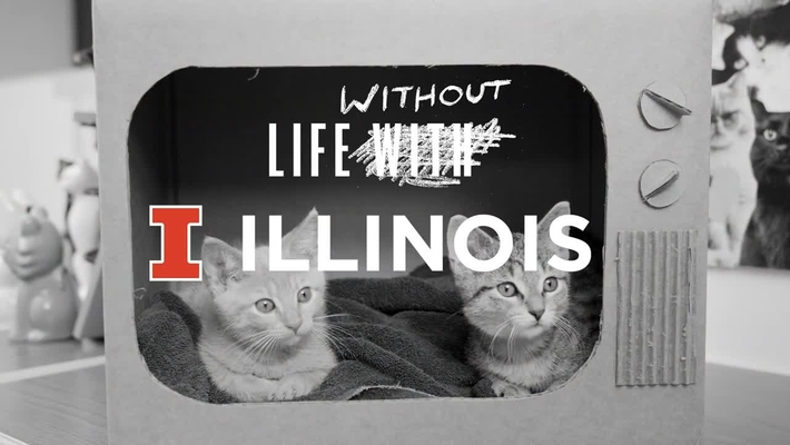 Without Illinois
