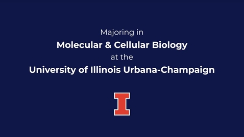 Thumbnail for entry Majoring in Molecular & Cellular Biology at the University of Illinois at Urbana-Champaign