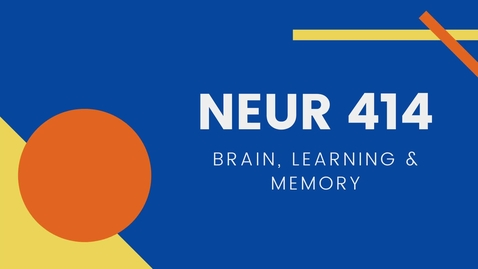 Thumbnail for entry NEUR 414: Brain, Learning and Memory