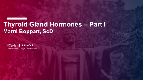 Thumbnail for entry Thyroid Gland Hormones - Part I