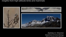 Thumbnail for entry NRES 2012 Fall Seminar Series - Zachary A. Cheviron
