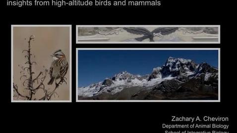Thumbnail for entry NRES 2012 Fall Seminar Series - Zachary A. Cheviron