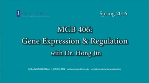 Thumbnail for entry MCB 406 (BIOC 406)- Gene Expression & Regulation, Conversation with Dr. Hong Jin