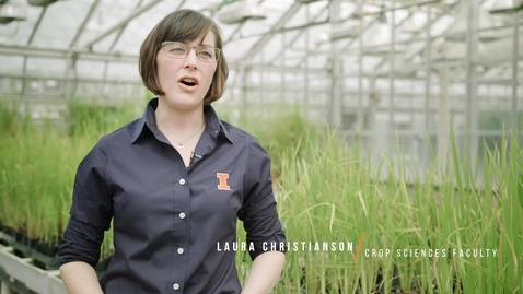 Thumbnail for entry Crop Sciences @Illinois