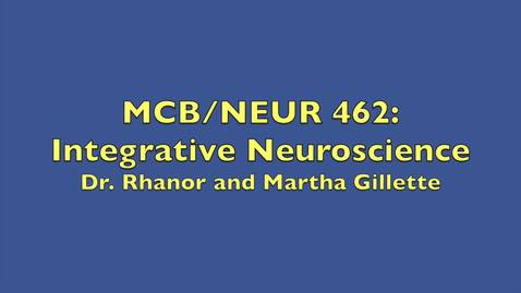 Thumbnail for entry MCB-NEUR 462- Integrative Neuroscience