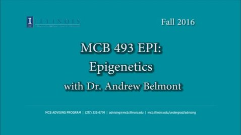 Thumbnail for entry MCB 493 EPI- Epigenetics, conversation with Dr. Andrew Belmont