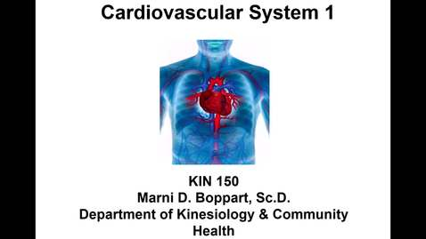 Thumbnail for entry Lecture 13 - Cardiovascular System 1