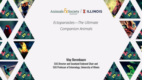 Thumbnail for entry May Berenbaum, Ectoparasites--The Ultimate Companion Animals, 2021 ASI UI Summer Institute