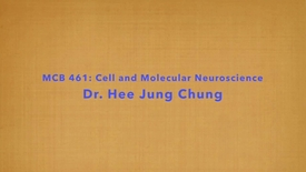 Thumbnail for entry MCB 461- Cell and Molecular Neuroscience, Conversation with Dr. Hee Jung Chung