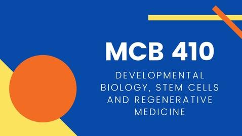 Thumbnail for entry MCB 410 - Developmental Biology, Stem Cells and Regenerative Medicine
