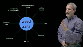 Thumbnail for entry Integrated Weed Management: The Opportunity