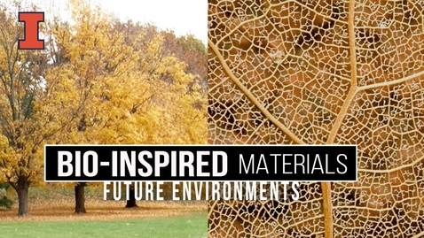 Thumbnail for entry Future Environments: Bio-Inspired Materials