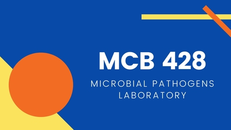 Thumbnail for entry MCB 428 - Microbial Pathogens Laboratory
