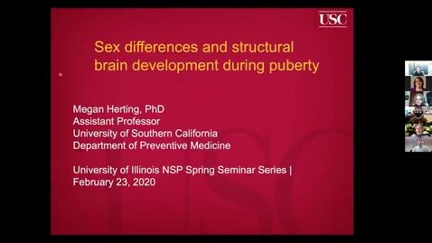 Thumbnail for entry NEUR 520, SEM - Meghan M. Herting, University of Southern California - 2/23/21