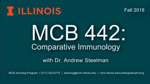 Thumbnail for entry MCB 442- Comparative Immunobiology, Conversation with Dr. Andrew Steelman