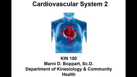 Thumbnail for entry Lecture 14 - Cardiovascular System 2