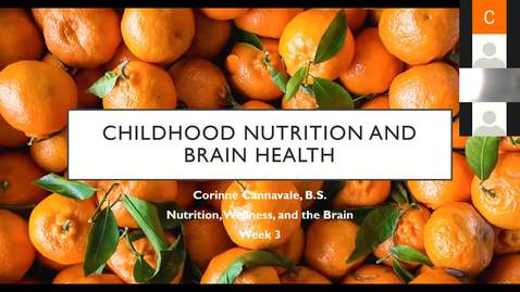 Thumbnail for entry Childhood Nutrition - Part 3 of the Nutrition, Wellness, and the Brain Series