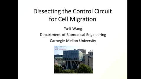 Thumbnail for entry Dissecting the control circuit for cell migration