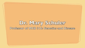 Thumbnail for entry MCB 316- Genetics and Disease, Conversation with Dr. Mary Schuler