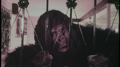 "Thumbnail for entry Rejas Navarro, ""Ni King Kong puede con ellas"""
