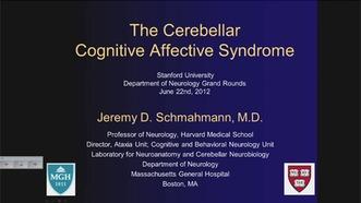 Cerebellar Cognitive Affective Syndrome   Neurology & Neurological