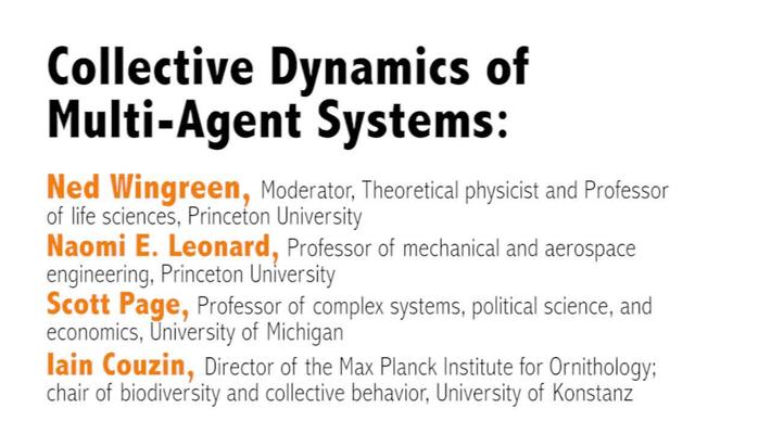 Metaphor – Promise and Peril: Complexity and Systems Thinking in Action : Day 2, Video 4: Collective Dynamics of Multi-Agent Systems / Closing Roundtable