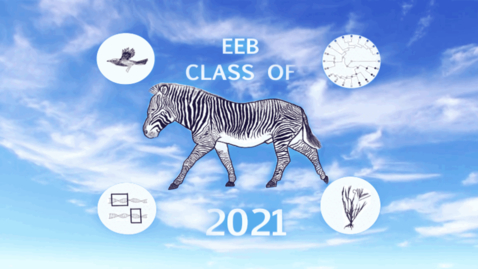 Thumbnail for entry EEB Class Day 2021