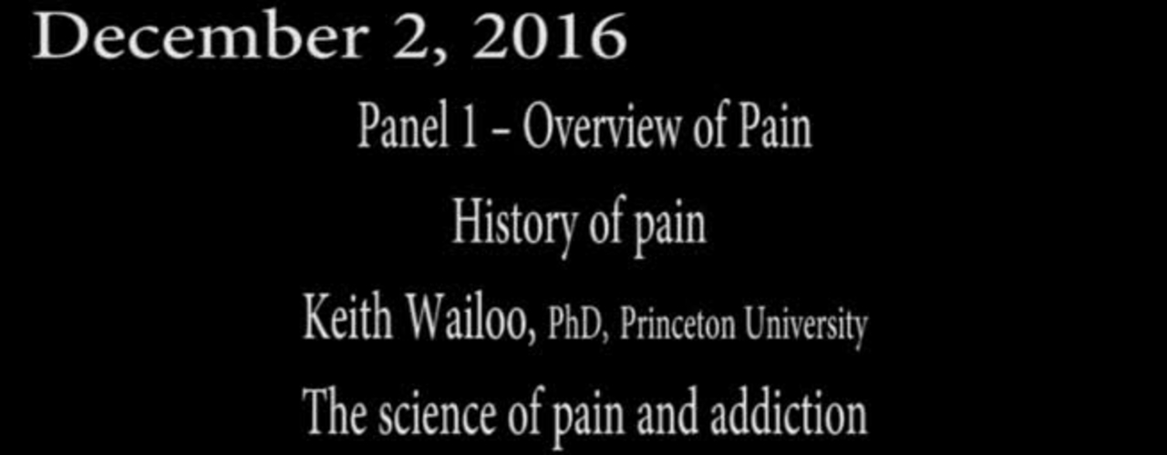 Pain Management Conference: Panel 1 – Overview of Pain