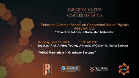 Thumbnail for entry Orbital magnetism in graphene systems