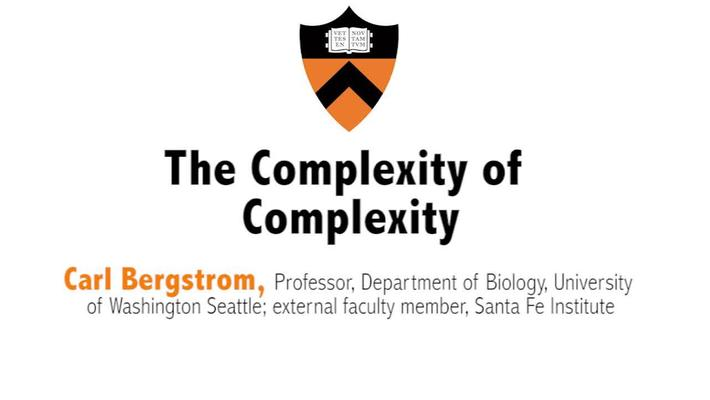Metaphor – Promise and Peril: Complexity and Systems Thinking in Action : Day 1, Video 3: The Complexity of Complexity